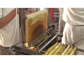 Откачка мёда на пасеке